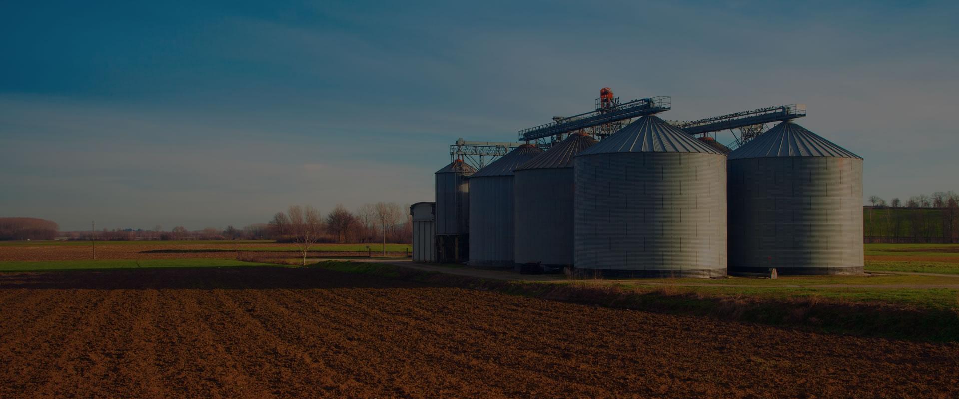Expertos en almacén de grano
