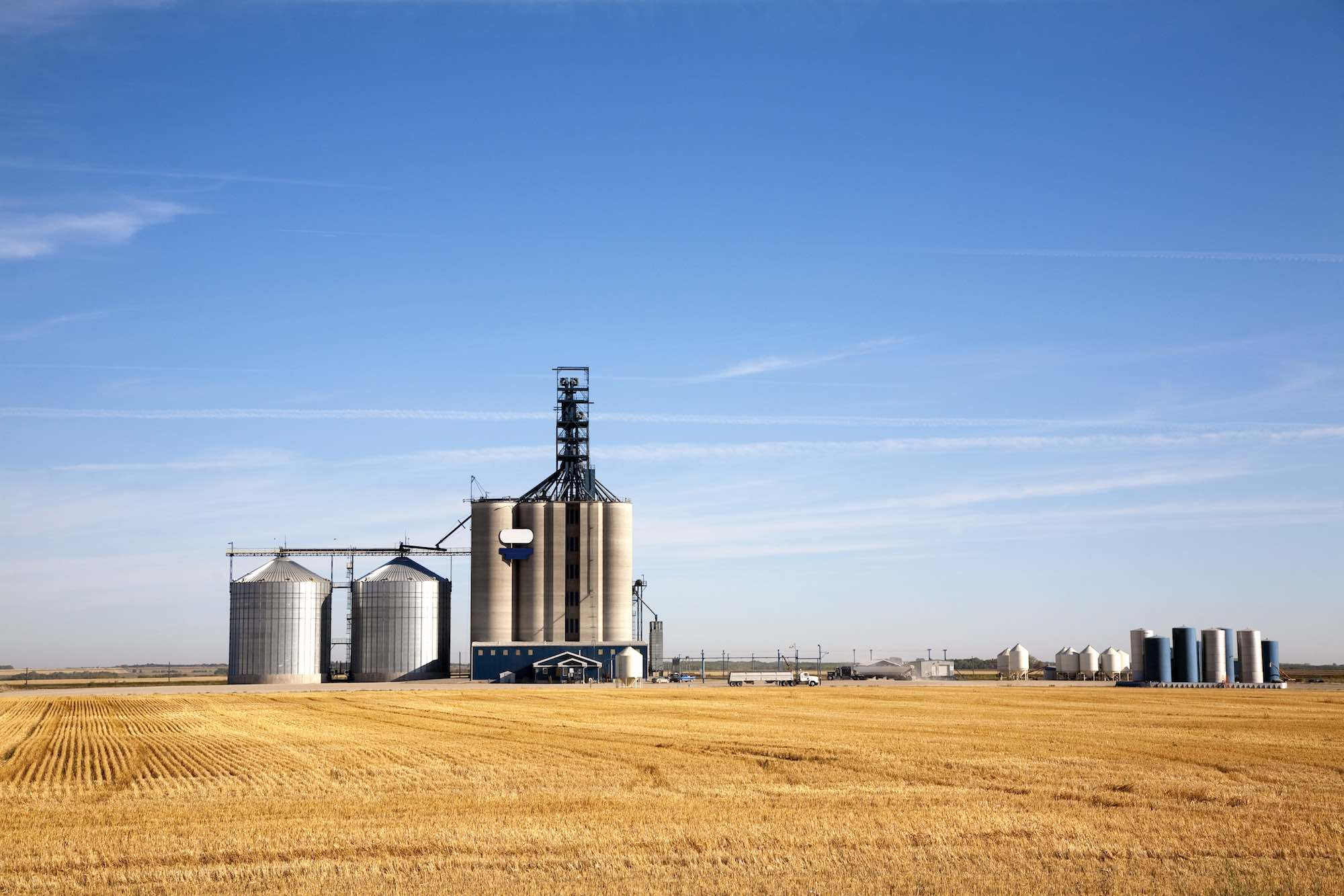 fotografia de silos junto a un campo de maiz